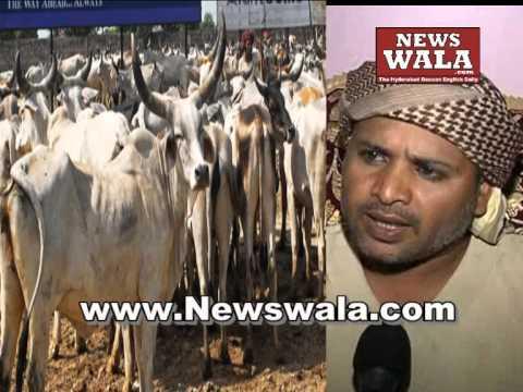 Arab Gaow raksha dal Barkas advises Muslims to avoid eating cow meat
