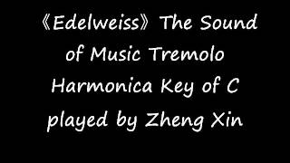 《Edelweiss》The Sound of Music Tremolo Harmonica Key of C