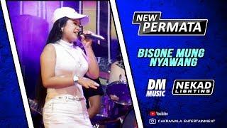 Bisane Mung Nyawang - New Permata Live Manukan Balongmasin 2019 DM Music