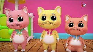 Tiga Anak Kucing Kecil | Lagu Anak-anak | Sajak Di