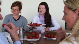 Zu Besuch bei QS-Tomatenerzeuger Carsten Knodt