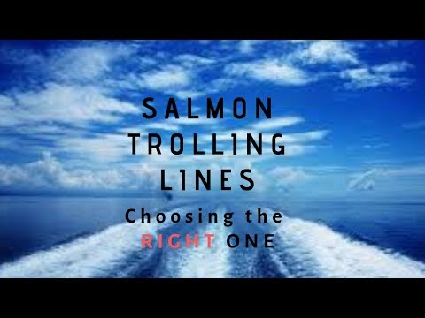 Choosing The RIGHT LINE For Salmon/Fundamental Fishing