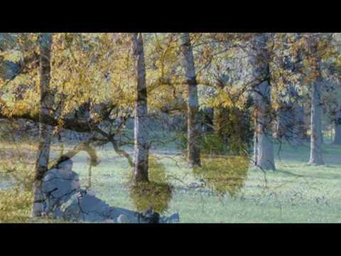 Kissing by the Mistletoe, Joe  Williams