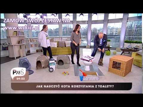 WCkici - Pytanie na śniadanie TVP2 www.wckici.pl