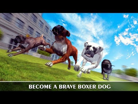 🐕Boxer City Dog Simulator 3D-By Virtual Animals World-Android