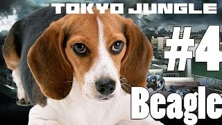 Tokyo Jungle - Beagle Survive Over 100 Years Part 4 Of 4 (feat Black Panther Boss)