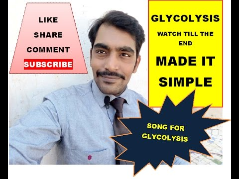 EASY WAY TO LEARN GLYCOLYSIS / WATCH TILL END FOR SONG OF GLYCOLYSIS