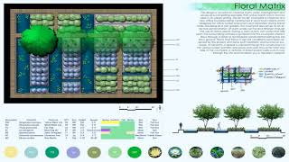 Gambar cover South Florida Landscape Design Pictures