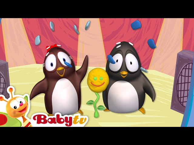 Pim & Pimba | Playing Fun Games for Kids with a Flower | BabyTV