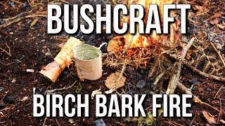 Bushcraft Fire Lighting: Birch Bark Fire | TA Outdoors