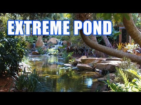 extreme-pond---pool-masters-top-ten