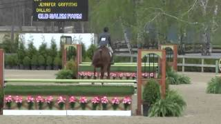 Video of DALLAS ridden by MISHA CUTTER NYE from ShowNet!