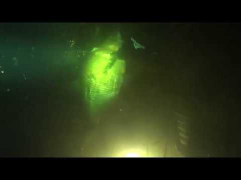 Подводная охота - большая плотва и лещ