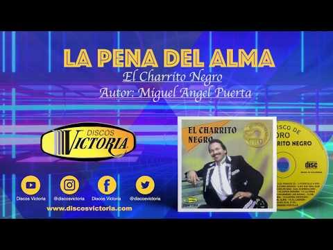 El Charrito Negro - La pena del alma Lyric Video