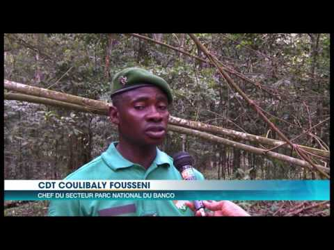 Tourisme: à la découverte des sites touristiques d'Abidjan et de Grand-Bassam