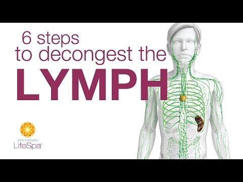 6 Steps To Decongest The Lymph  |  John Douillard's LifeSpa