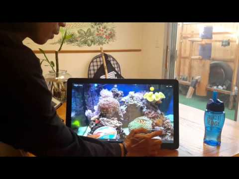 Samsung Galaxy View 18 inch  Home demo/review (Multitasking, Camera, Games, Side sync, Videos, etc)