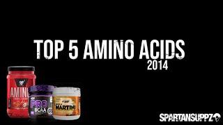 Top 5 Best Amino Acid Supplements 2014