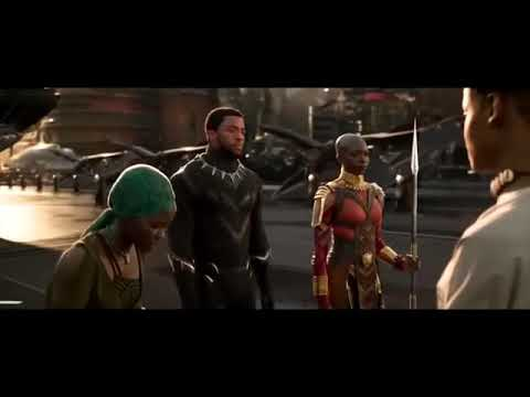 Black panther All Fight scenes
