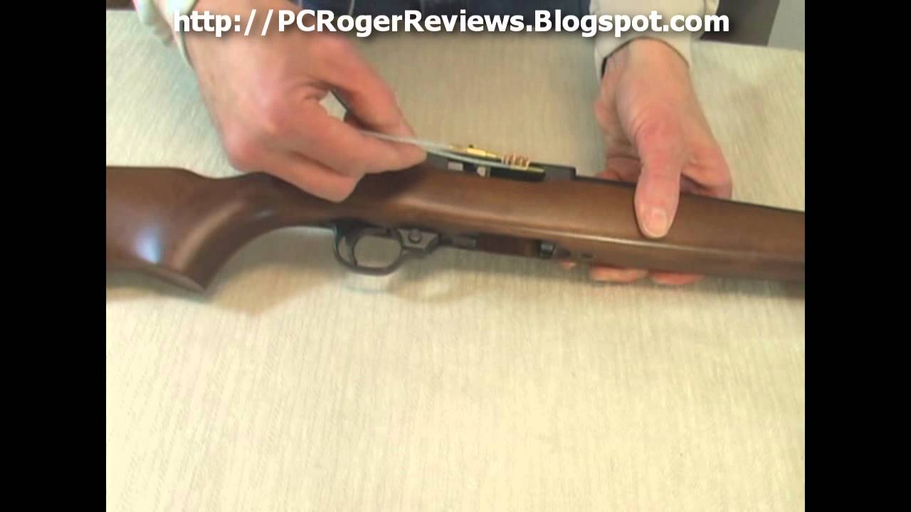 Here Are The Right Tools To Clean A Ruger 10 22 You