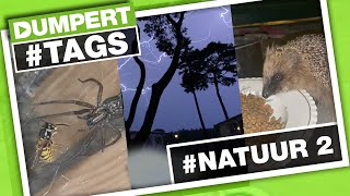 Moeder #NATUUR is EPISCH! | Dumpert Tags