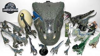 My Velociraptor Blue Toys Collection - Jurassic World Fallen Kingdom Dinosaur Toys & Action Figures