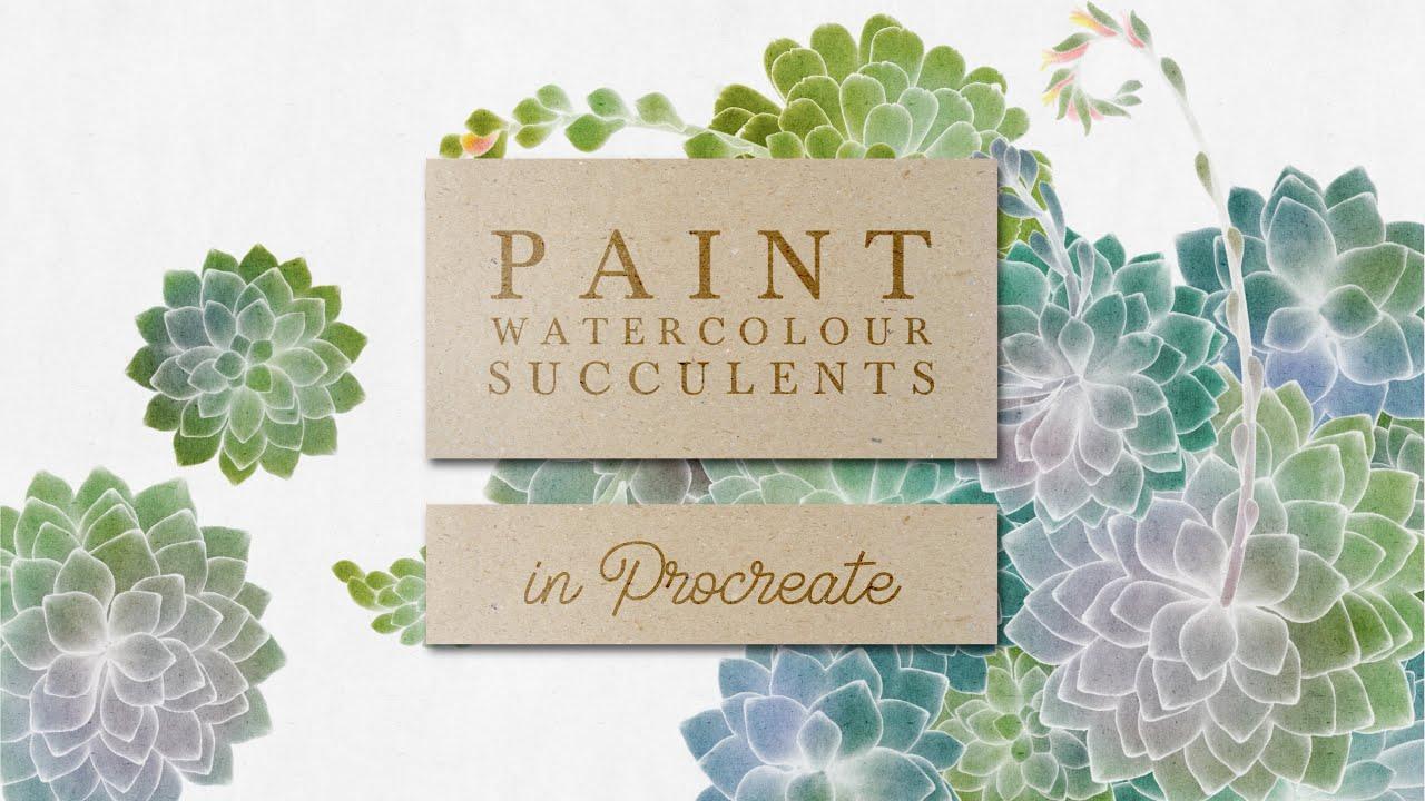 Paint Watercolour Succulents in Procreate