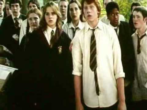 I'm Coming Out (Hermione)