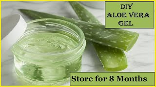DIY Homemade ALOE VERA GEL  100% Pure  How To Make Aloe Vera Gel And Store It For Months