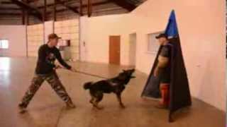 Ihpk9 Training Highlight - Central Illinois' Top Choice For Schutzhund / Ipo Dog Training