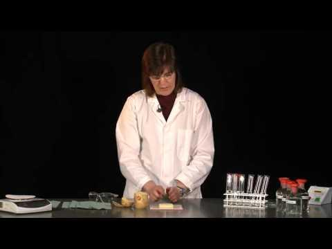 AQA GCSE Biology - Effect of salt solutions on plant tissue
