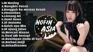 Dj Nofin Asia - spesial HANING dan lagu-lagu Indonesia .Mp4