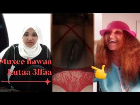Download Muxee hawaa wollagga Shamaran fedhii dhiirra eguuf mal gochuu Qabduu video kana dawadhaa Shamaran fe