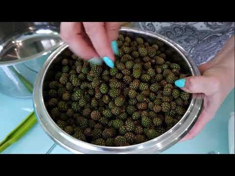 Готовим варенье из сосновых шишек