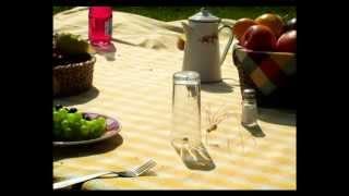 Csodabogarak - Piknik (2.évad 3.rész)