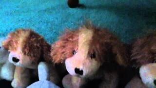My Webkinz Collection part 3 Thumbnail