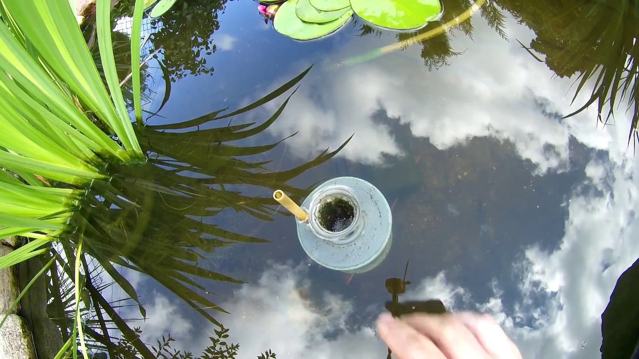 Skimeris nedideliam tvenkinukui diy small pond skimmer for Diy pond skimmer plans