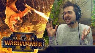 FREE FOR ALL BATTLE  | Total War: Warhammer 2