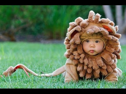 Top 10 Cutest Baby Halloween Costumes  sc 1 st  YouTube & Top 10 Cutest Baby Halloween Costumes - YouTube