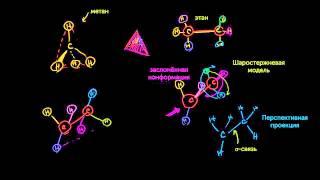 Проекции Ньюмена