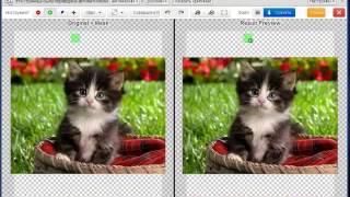 Удаляем фон с фотографии или картинки. Самый быстрый способ.