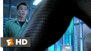 40 Days and 40 Nights (2/12) Movie CLIP - The Layout Problem (2002) HD