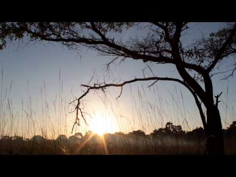 Lyds Zambia Time lapses