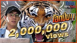 เสืออะไรวะร้องโฮกปิ๊บ?!! : โซเชียลสนุกจังโว้ย  l VRZO