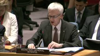 Jürgen Stock, INTERPOL Secretary General Addressing the United Nations Security Council