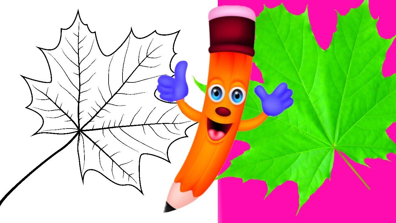 Как нарисовать ЛИСТ клена КАРАНДАШОМ! Учимся рисовать Лист КЛЕНА  Карандашом! Как Научиться РИСОВАТЬ