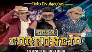 Baixar TRIO FORRONEJO 2018