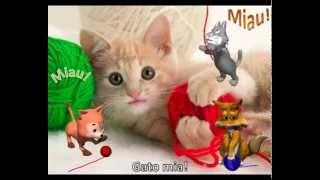 Baixar Xuxa - Gato Mia