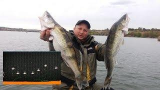Как найти  СУДАКА...  Отличный улов... СУПЕР рыбалка!!!