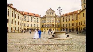 Свадьба  в Несвижском замке г Несвиж. Виталий и Анна